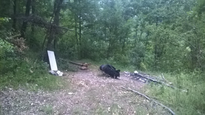 Camping in Serbia