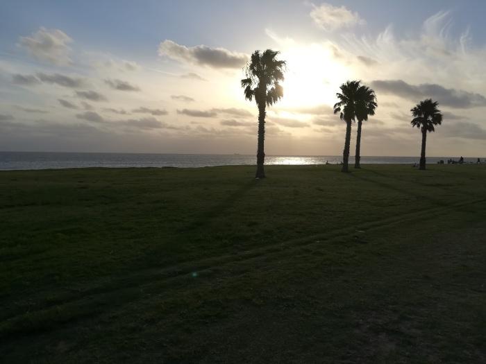 Green Landscape uruguay
