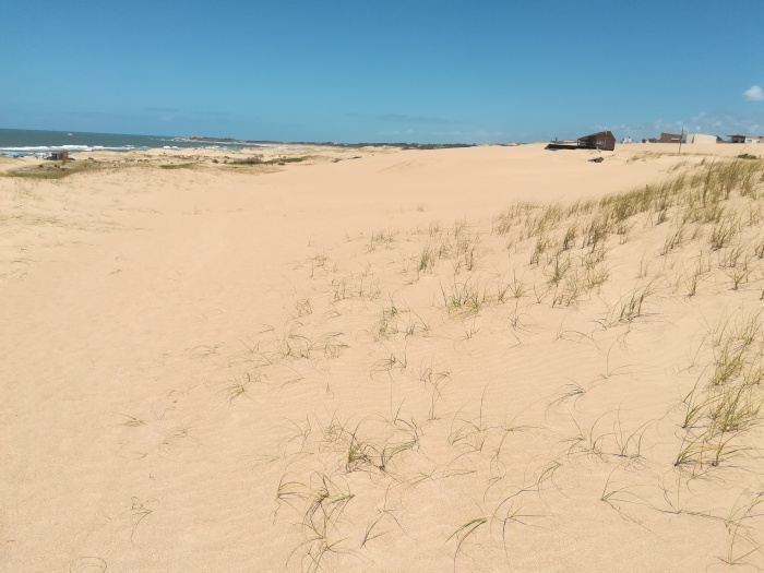 Beach in Punta del Diablo